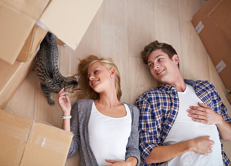 man and woman laying on petting tabby cat surrounded by moving boxes
